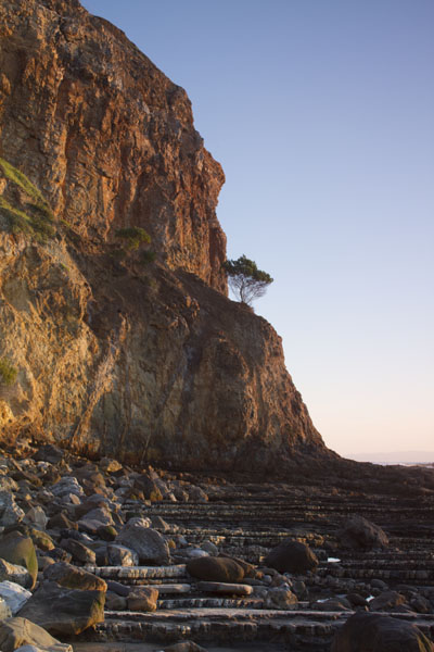 Cliff with tree at sunset