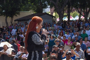 Singer working the crowd. 2013
