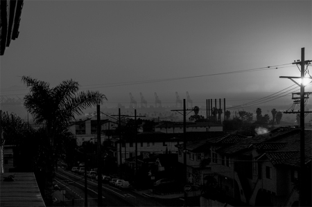 blak-white of LA Port with fog