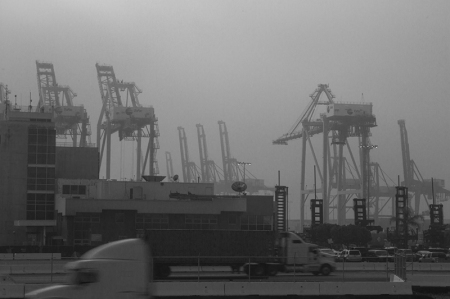 Cranes in the fog. L.A. Port Fog series 2015