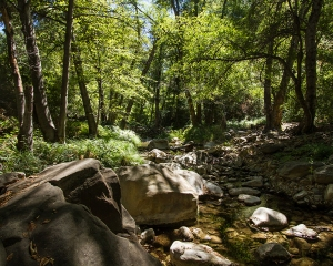 Stream, So Cal  Mts. 2014