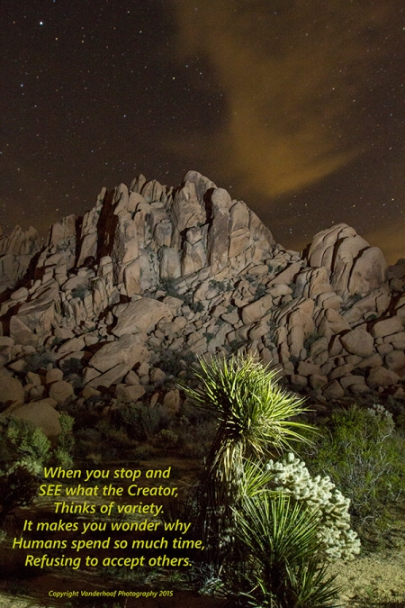 Night light painting photography in Joshua Tree N. P. California
