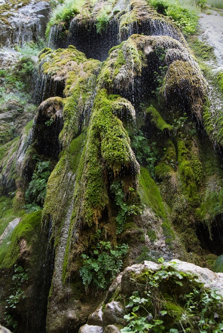 """Mossy Cascade"" Please sit a moment and listen to the drops. Copyright Vanderhoof Photography 2015"
