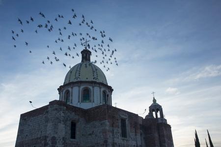 2016 San Juan Lagos-7899