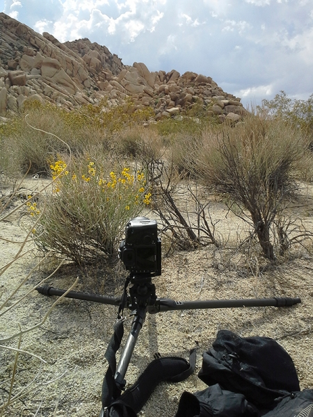 2016 tripod review 1b