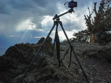 2016 tripod review 1f