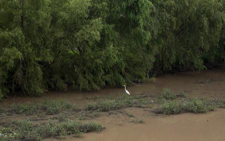20160714 San Juan river walk  post-4904FB