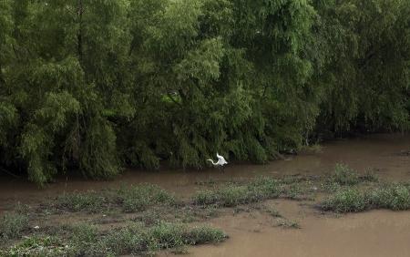 20160714 San Juan river walk  post-4906FB