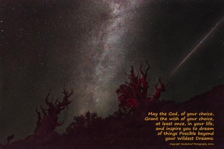 20150809-bristlecone-timelapsexx-1488_god-of-choice300