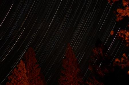 yosemite-star-trails