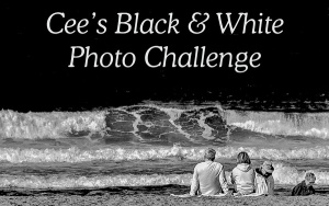 CEEs black-white-banner